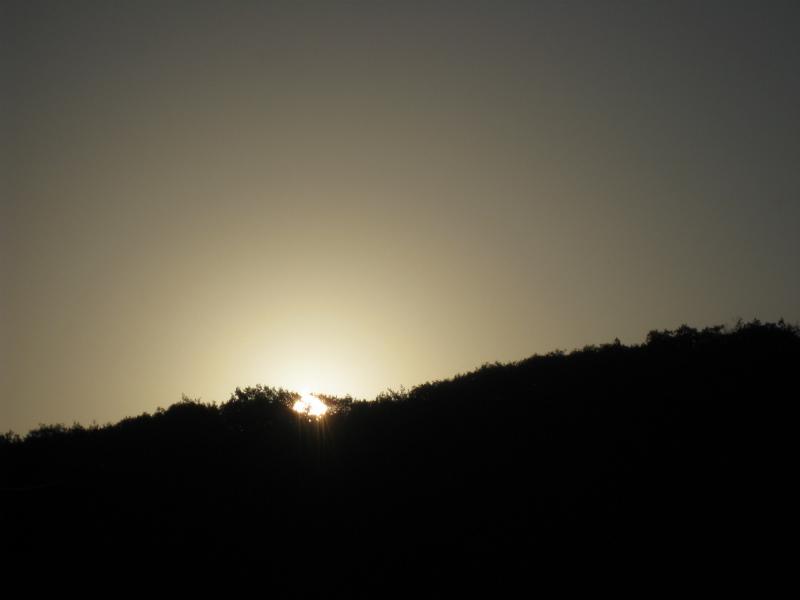 日の出に立ち会う