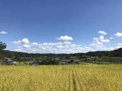 写真でみる!(2)田んぼの楽校のらのら2018(10月稲刈り〜12月)